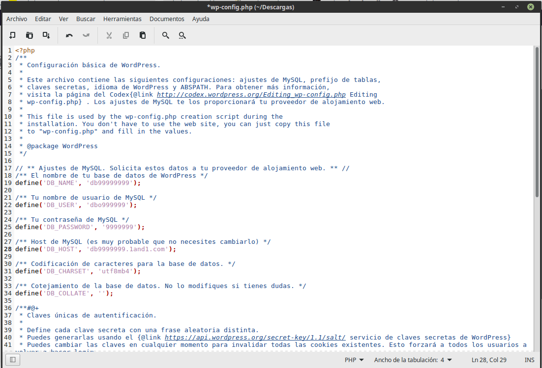 Imagen editor wp-config.php